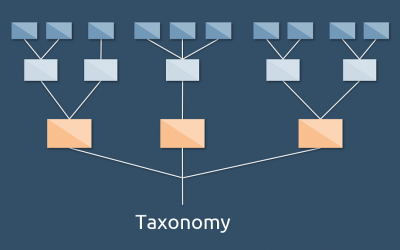 Why Taxonomy?